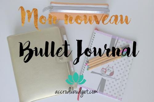 nouveau bullet journal500